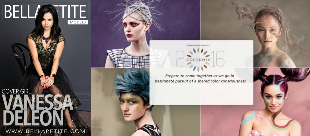 Bella Petite on Color Trends