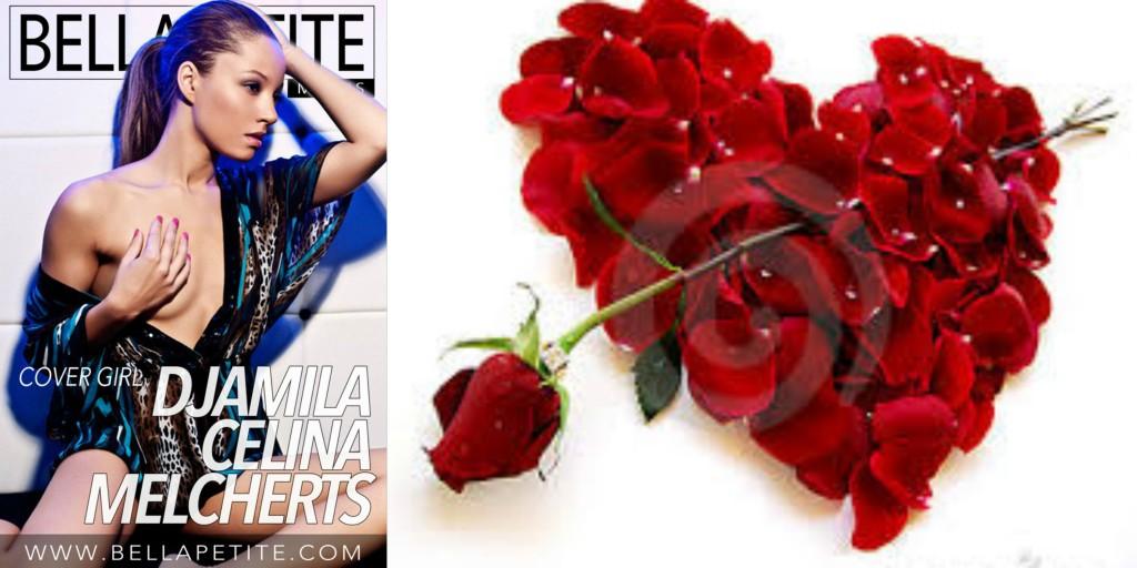 Valentine Roses Bella Petite Magazine