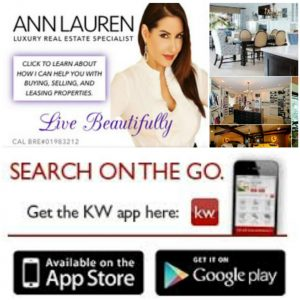 Ann Lauren Real Estate App