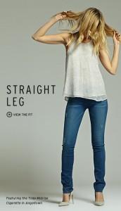 Bella Petite Hudson Straight Leg Jean